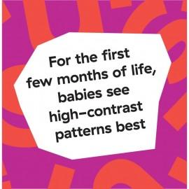 Salteluta de activitati Bold New World Baby Einstein 11398