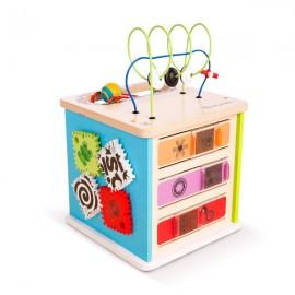 Centru de activitati Hape Innovation Station™ Baby Einstein